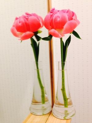 KAYOKO MATSUDATE花.jpg